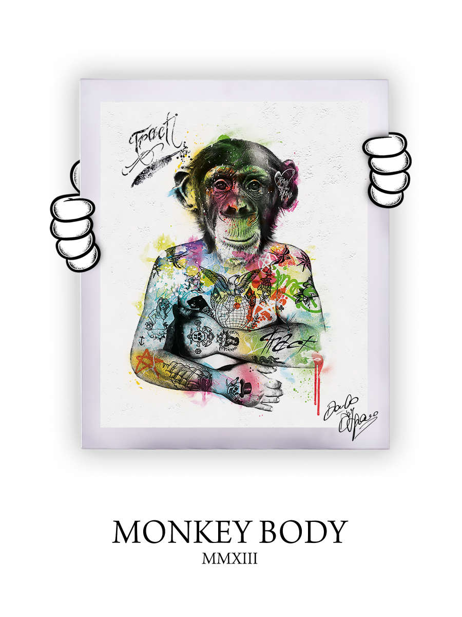 Street Art Monkey Body 2013