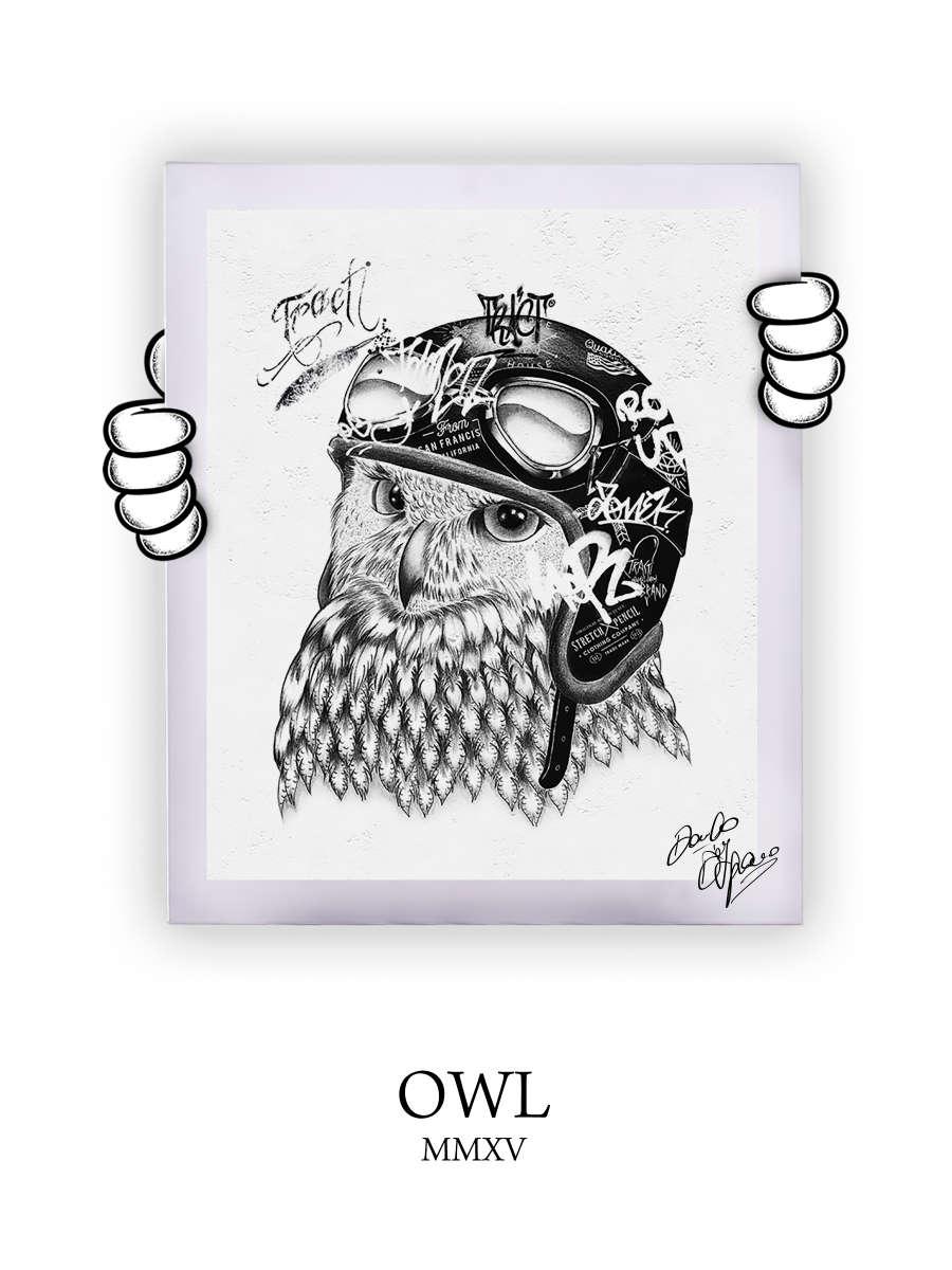 Street Art Owl 2015